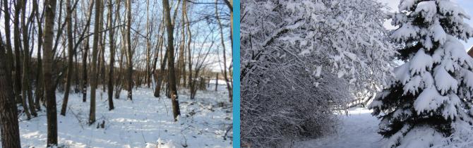 Kerca Bio Farm télen